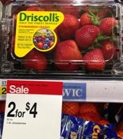 target driscolls straw sm