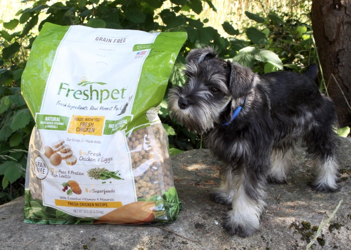 Freshpet and Bailey