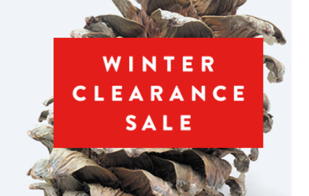 nordstrom clearance sale pic
