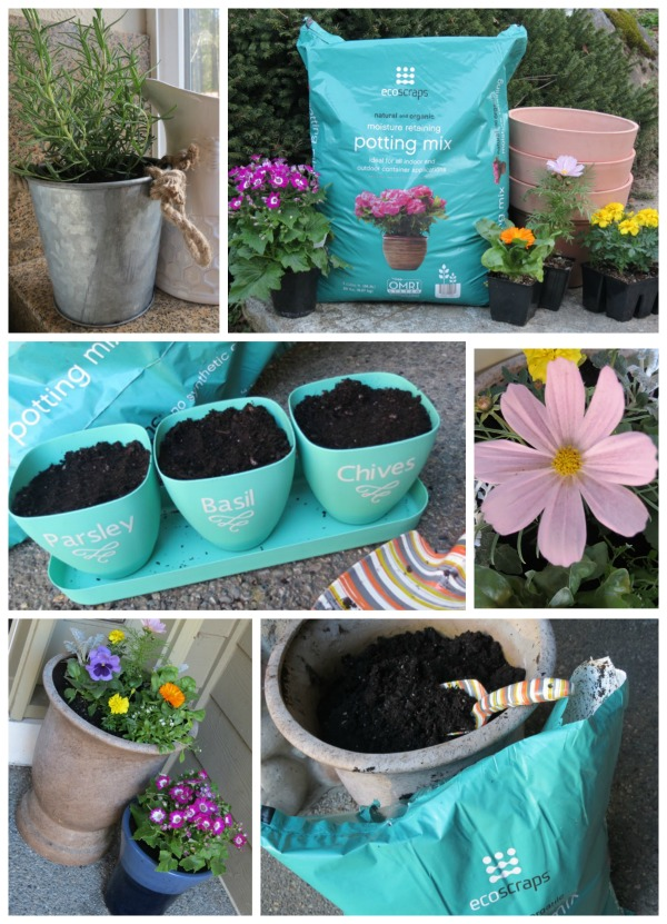 Spring Planting and Herb Garden with EcoScraps Potting Mix