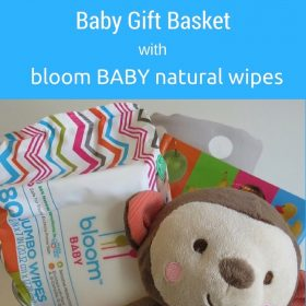 Bloom Baby Natural Baby Wipes & Baby Gift Ideas