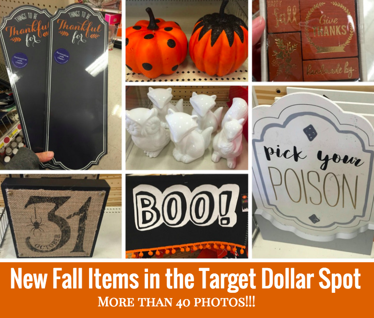 New Fall Items in Target Dollar Spot