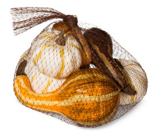 target-small-pumpkins-in-net